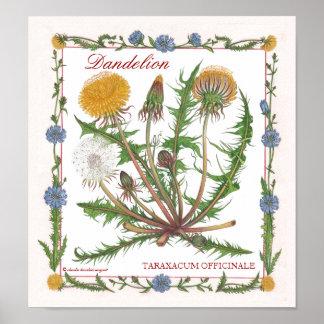 In the Garden ~ Dandelion Poster