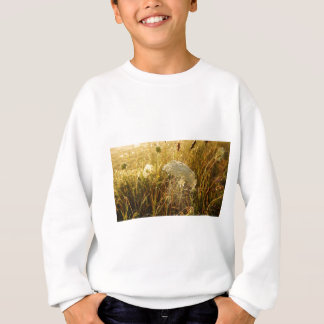 In the golden glow of morning  Queen Anne's Lace Sweatshirt