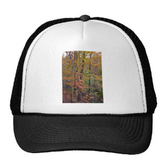 In the Midst of Nature Trucker Hat