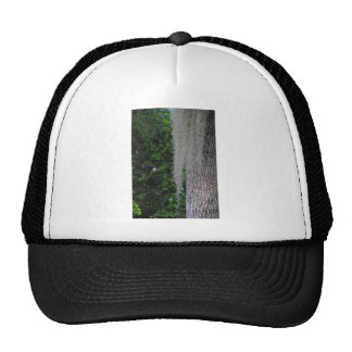 In the Preserve-FA,s6,2020.JPG Trucker Hat