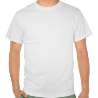 In the reality, nobody is imported t-shirts