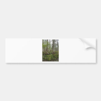 In the Swamp Bumper Sticker