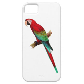 In The Tiki Room Case For The iPhone 5