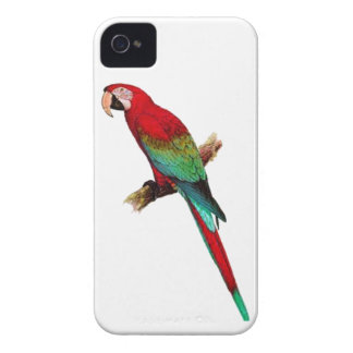 In The Tiki Room Case-Mate iPhone 4 Case
