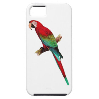 In The Tiki Room iPhone 5 Cases