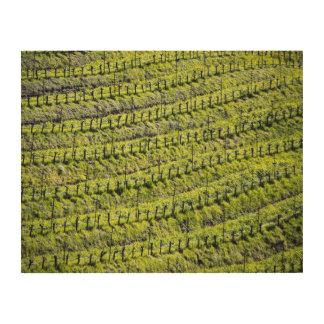 In the vines wood print