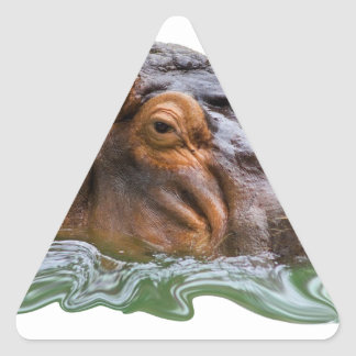 IN THE WATER TRIANGLE STICKER