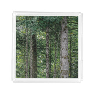 In the Woods Acrylic Tray