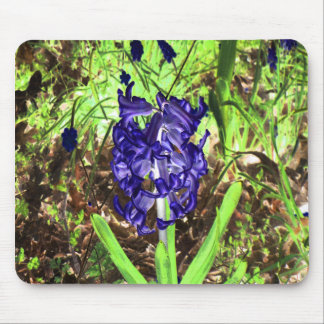 In the woods cometh Spring... Mouse Pad