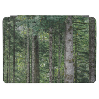 In the Woods iPad Air Cover