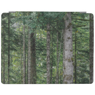 In the Woods iPad Cover
