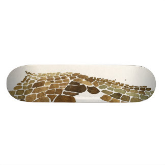 Inca salt pans design skate decks