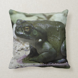 Incilius alvarius throw pillow
