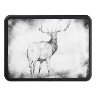 Indecision in the Mist Trailer Hitch Cover