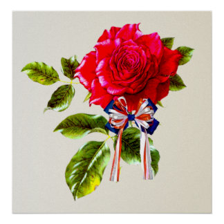 Independence Day Rose Poster