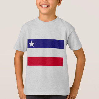 Independent State Of Okinawa, Japan flag T-Shirt