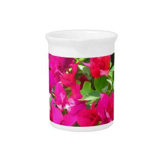 India travel flower bougainvillea floral emblem pitchers