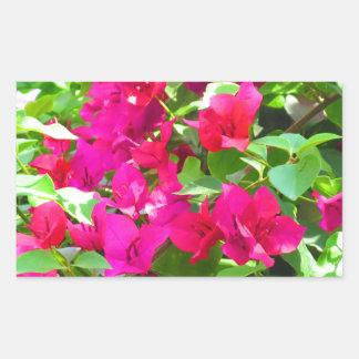 India travel flower bougainvillea floral emblem sticker