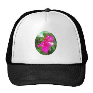 India travel flower bougainvillea floral emblem trucker hat