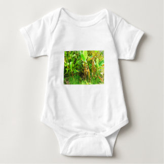 India Travels Infant Banana trees saplings Green Baby Bodysuit