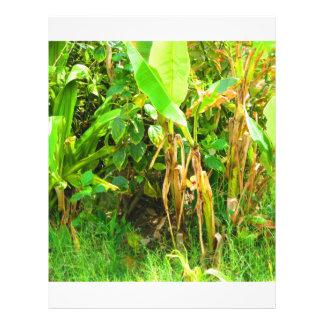 India Travels Infant Banana trees saplings Green Personalized Letterhead