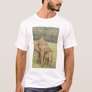 Indian / Asian Elephant and young one,Corbett T-Shirt