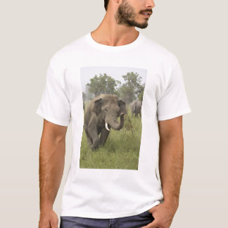 Indian / Asian Elephant greeting,Corbett T-Shirt