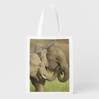 Indian / Asian Elephants sharing a Market Totes