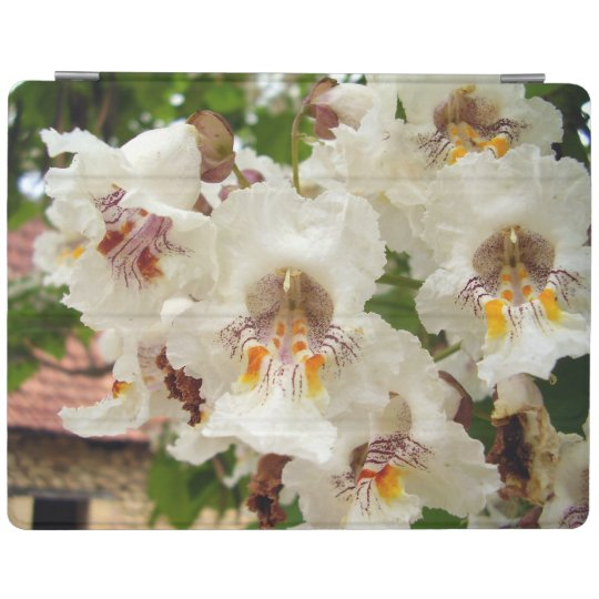Indian Bean Tree Flowers iPad Cover