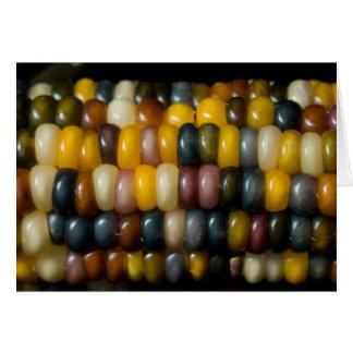 Indian corn (blank) card