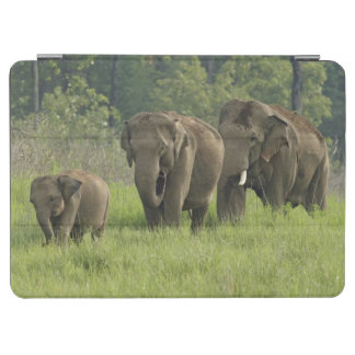 Indian Elephant family coming out of iPad Air Cover
