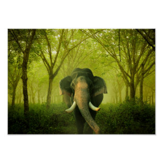 Indian Elephant Stunning Large Mammal Green Forest Poster