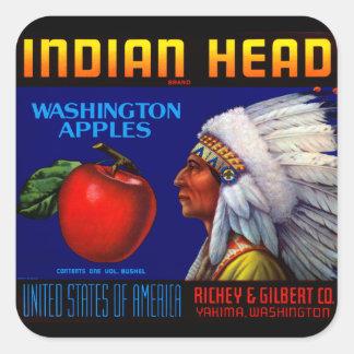 Indian Head Washington Apples Square Sticker
