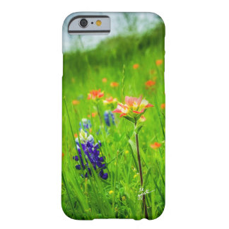 Indian Paintbrush and Bluebonnets iPhone Cases