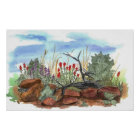 Indian Paintbrush Flowers Desert Landscape Poster