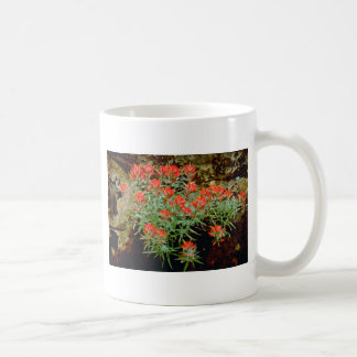 Indian Paintbrush in Zion National Park, Utah Red Coffee Mug