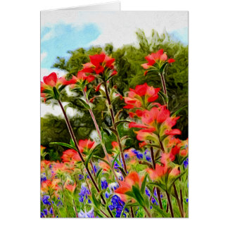Indian Paintbrush on Canvas Card