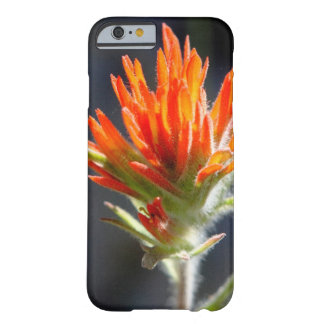 Indian Paintbrush Phone Case