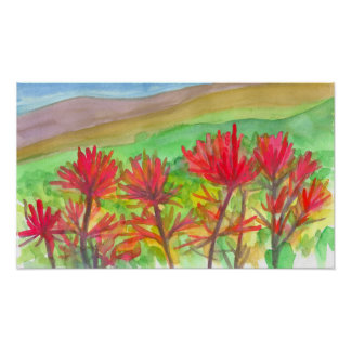 Indian Paintbrush Watercolor Wildflowers Painting Poster