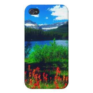 Indian Paintbrush Wildflowers Case For iPhone 4