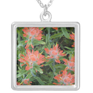 Indian paintbrush wildflowers in the Many Silver Plated Necklace
