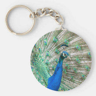 Indian Peacock Basic Round Button Keychain