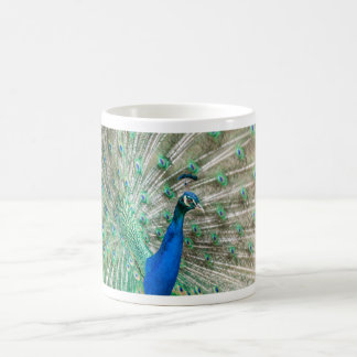 Indian Peacock Coffee Mug