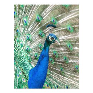 Indian Peacock Letterhead