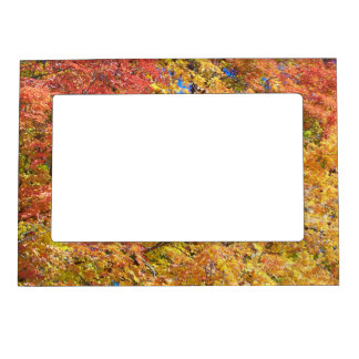 Indian Summer Magnetic Photo Frame