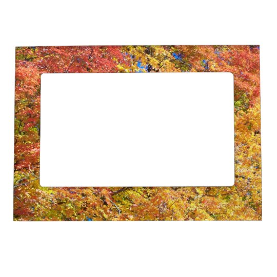 Indian Summer Magnetic Picture Frames