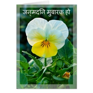 Indian white and yellow pansy birthday card