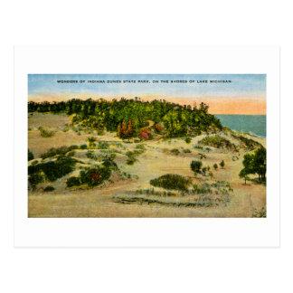 Indiana Dunes State Park Lake Michigan, Indiana Postcard