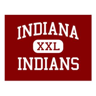 Indiana - Indians - Area - Indiana Pennsylvania Postcard
