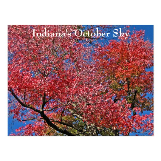 Indiana's October Sky Postcard